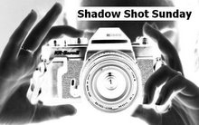 shadow-shot-sunday-logo1