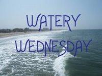 waterywed2b1